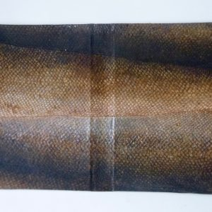 Bark tanned Salmon book cover
