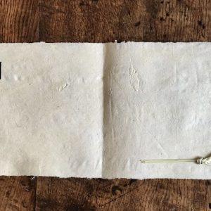 Marram Grass Paper